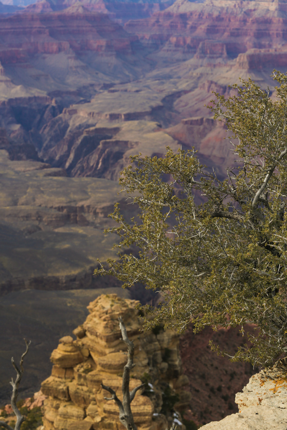 An essay on the myth of the grand canyon