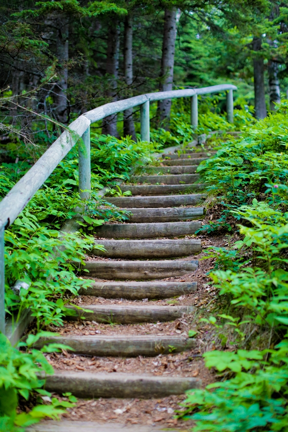 Hiking to Lookout Mountain at Cascade River State Park, Lutsen, MN
