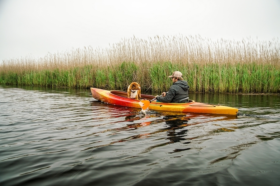 Kayaking through the Back Bay National Wildlife Refuge in Virginia Beach