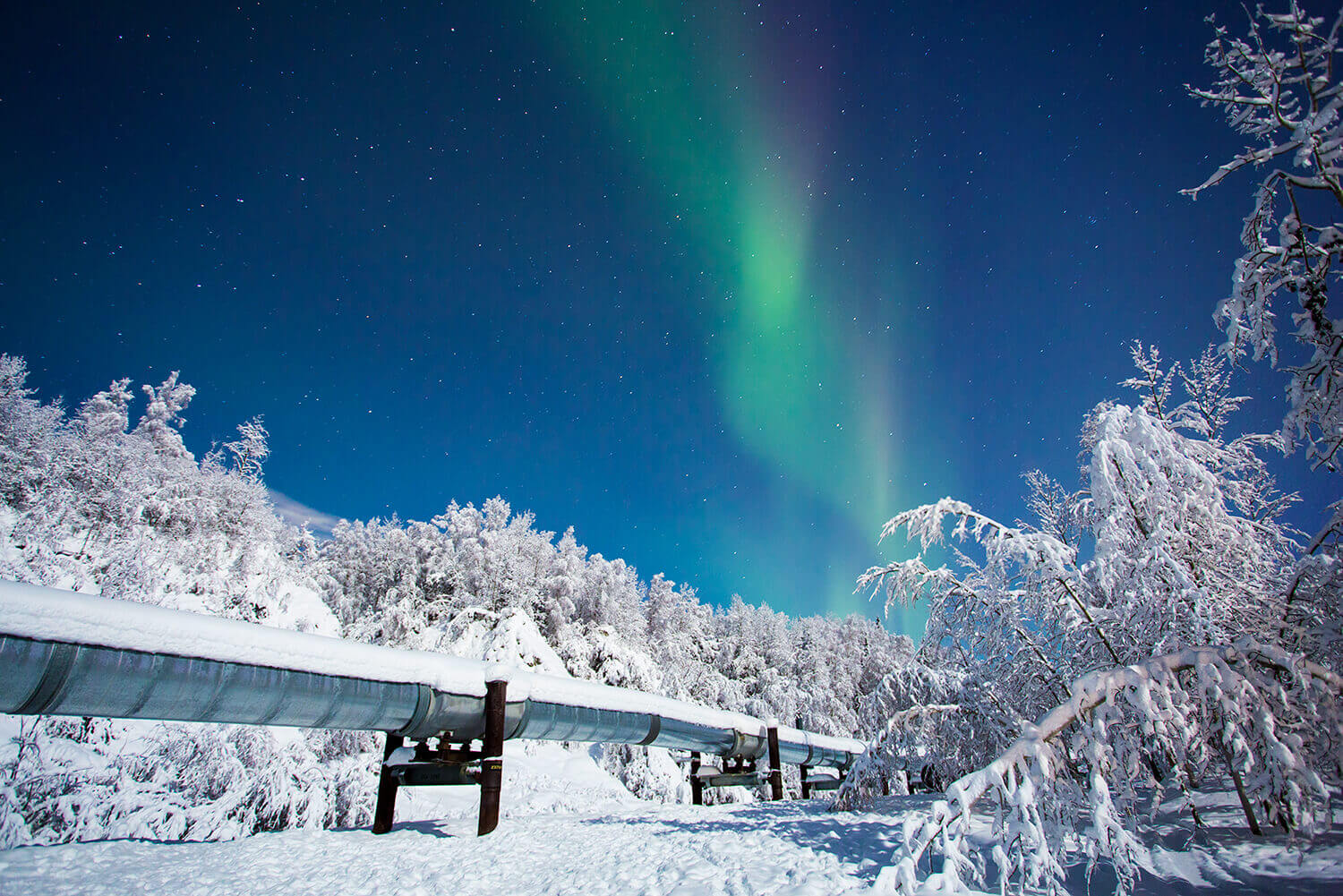 Searching for Northern Lights in Fairbanks, Alaska