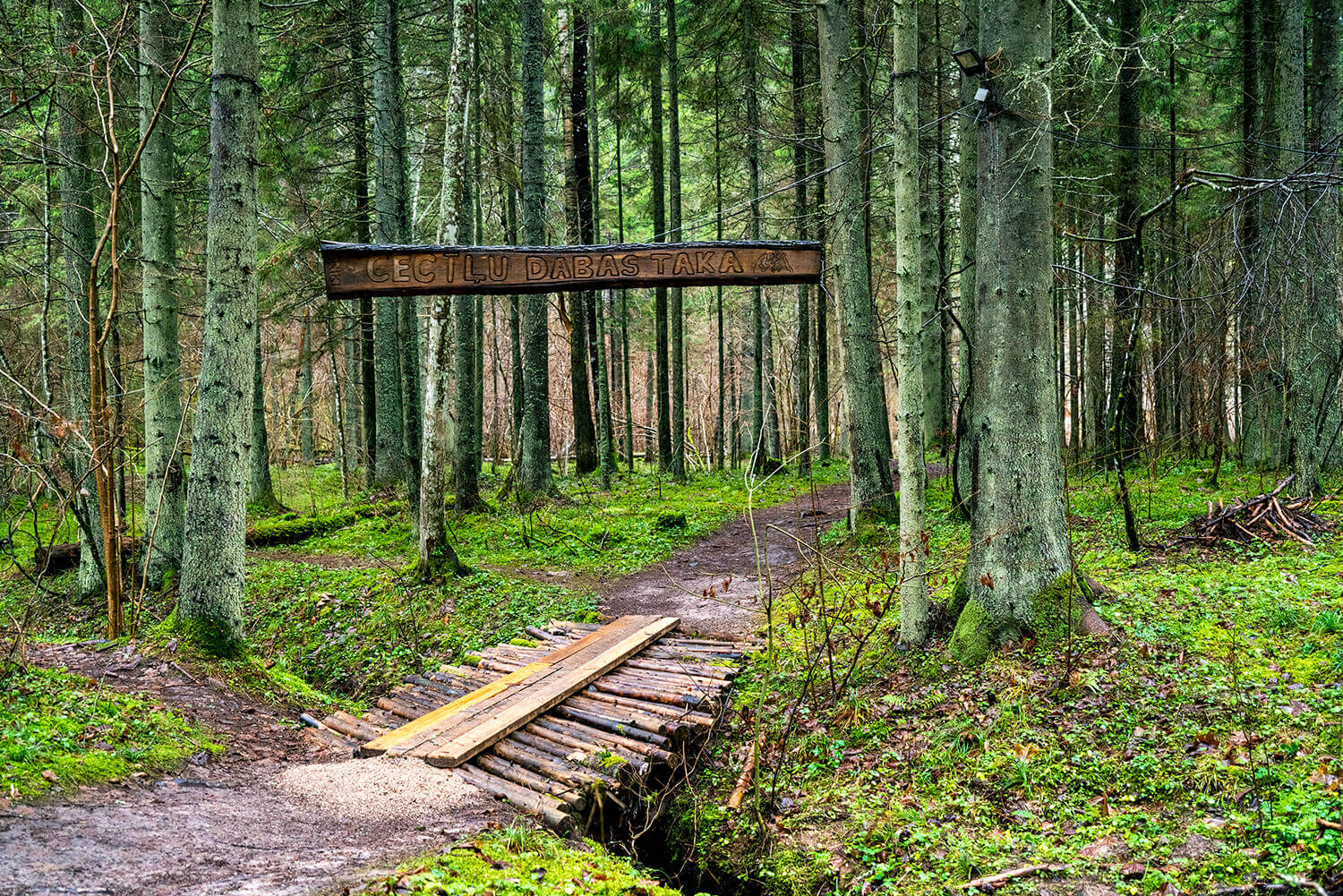 Adventures_in_Gauja_National_Park_Latvia