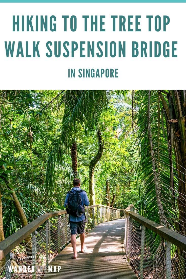 TreeTop Walk in Singapore: Monkeys, Heights, and Humidity
